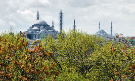 View of Suleymaniye and Fatih Mosques in Istanbul Stock Image
