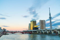 View of Sumida River. With Tokyo City Royalty Free Stock Photo