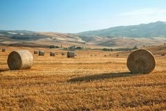 View of summer landscape in Tuscany, Italy Royalty Free Stock Photos