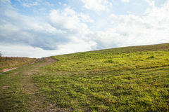 View of a summer meadow Royalty Free Stock Photos