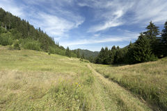 View on the summer Slovakia Mountains Low Tatras Stock Photos