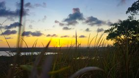 View of the sunset in the grass stock images