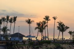 Palm Trees at Sunset. View of the sunset from the lakes behind the beach royalty free stock photos