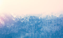 View on sunset at winter mountains Stock Images