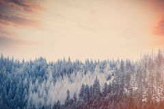 View on sunset at winter mountains Royalty Free Stock Photo