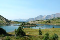 View at sunshine meadow Royalty Free Stock Photography