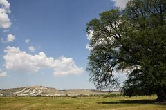 View from the Suvorov oak on white mountain in Royalty Free Stock Photography