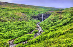 View of Svartifoss meaning Black Falls, Iceland Stock Image