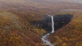 View of Svartifoss waterfall basalt waterfall. Handheld shoot in 1080 stock footage