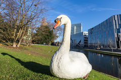 View of swan in front of the Ko - Bogen. The Ko-Bogen is a large Royalty Free Stock Images