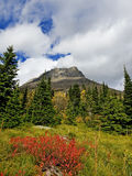 View from Swiftcurrent Trail in Many Glacier Royalty Free Stock Photos