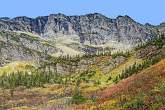View from Swiftcurrent Trail in Many Glacier Stock Photos