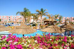 The view on swimming pool at luxury hotel (flowers are in focus) Stock Photo