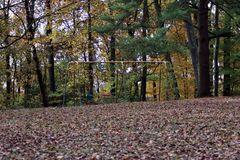 A view of a swing set. In the woods of a fall day stock image