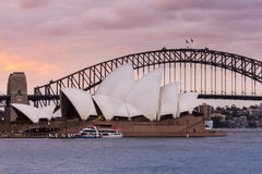 View of sydney opera houses from Botanic garden. Stock Images