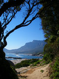 View of Table Mountain. A view of Table Mountain, Cape Town - Looking towards Camps Bay stock photos