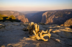 View from Taft Point. Yosemite National Park. One of the most famous National parks in California USA Royalty Free Stock Photos