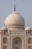 View of the Taj Mahal Stock Photos