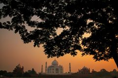 View of Taj Mahal framed by a tree crown at sunset, Agra, Uttar. Pradesh, India. Taj Mahal was designated as a UNESCO World Heritage Site in 1983 royalty free stock photos