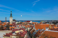 View of Tallin Stock Image