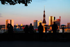 The view of Tallinn from a height Royalty Free Stock Image