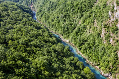 View of the Tara River Canyon in Montenegro Stock Photography