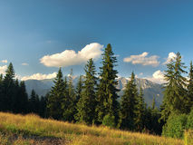 View of Tatra Royalty Free Stock Images