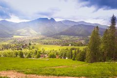 A view of the Tatra mountain range. In the foreground, green grass. And trees Royalty Free Stock Image