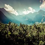 View of Tatra Mountains from hiking trail. Poland. Europe. Royalty Free Stock Photos