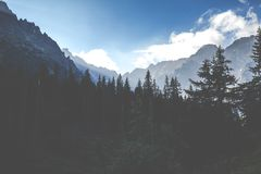 View of Tatra Mountains from hiking trail. Poland. Europe. Stock Image