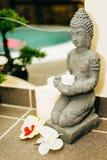 Zen concept. View at te spa wellness zen concept royalty free stock photo