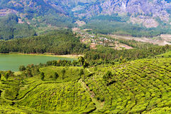 View of tea plantation valley and Madupetty Dam in Munnar Royalty Free Stock Photography