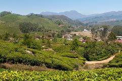 View of tea plantation valley in Munnar Stock Photo