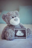 View of teddy bear and baby ultrasound Stock Images