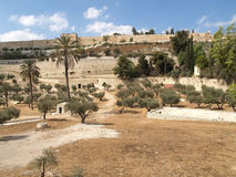 View of the Temple mountain. Jerusalem, Israel Royalty Free Stock Photo