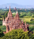 A view at the temples of Bagan in Myanmar Royalty Free Stock Images