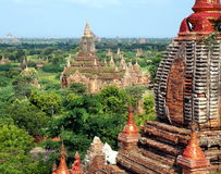 A view at the temples of Bagan in Myanmar Royalty Free Stock Photography