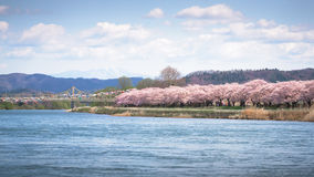 View of Tenshochi Park in Iwate Prefecture,Japan is famous for t Stock Images