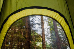 A view from the tent in the forest Royalty Free Stock Photo