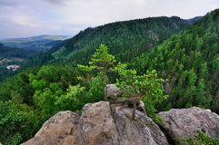View from the Teplice Rocks Stock Photography