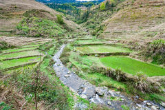 View of terraced grounds and streem in Dazhai. Travel to China - view of terraced grounds and streem in Dazhai village in country of Longsheng Rice Terraces ( Royalty Free Stock Images