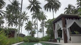 A view of the territory of the tropical resort with the pool palm trees stock video footage