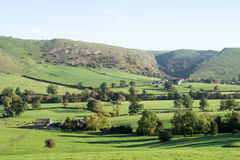 View of Thorpe Cloud, Dovedale, Derbyshire. View of Thorpe Cloud, Dovedale, Peak District, Derbyshire with farm buildings and cattle in the distance Royalty Free Stock Photo