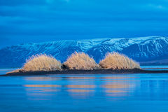 View on three dunes and their reflections on the frozen sea of Iceland. Beautiful scenery in Iceland, with three dunes covered with grass and casting Stock Photos