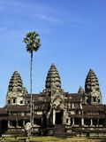 View of three towers of Angkor Wat temple. With a high palm stock photo