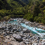 View of Thunder Creek Royalty Free Stock Image