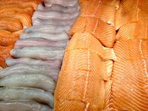 Seafood in the store. View at the tilapia, salmon and pickerel fish fillets in the store display case Royalty Free Stock Photography