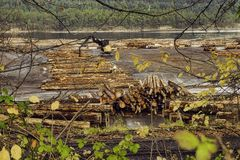 Timber and logging industry in Ladysmith, Vancouver Island. View of timber and logging industry in Ladysmith, Vancouver Island, British Columbia stock images