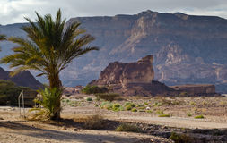 View on Timna park, Israel Stock Photography