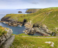 View from Tintagel. Landscape view looking east from Tintagel over Cornish coastline, showing wild flowers in foreground Stock Images